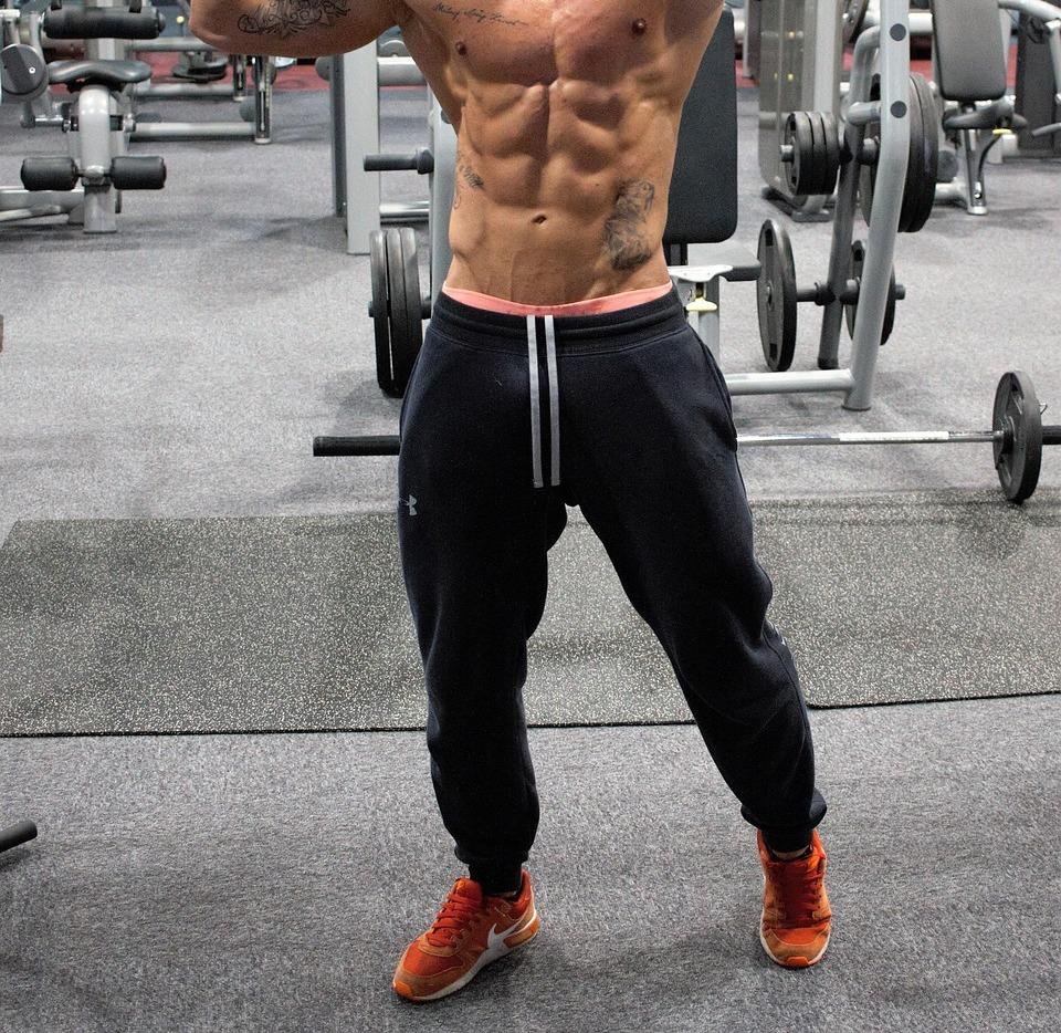 Muscoli lavorati dalla guaina